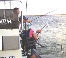Austin 39 s south padre island fishing charters about for South padre island fishing trips