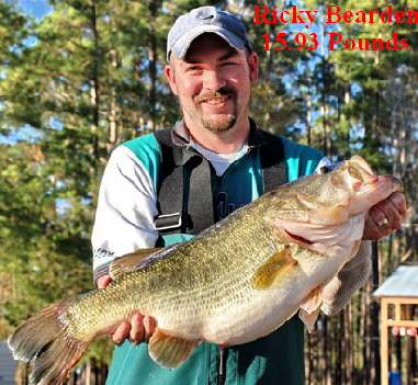Texas parks wildlife pictures news information from for East texas fishing report