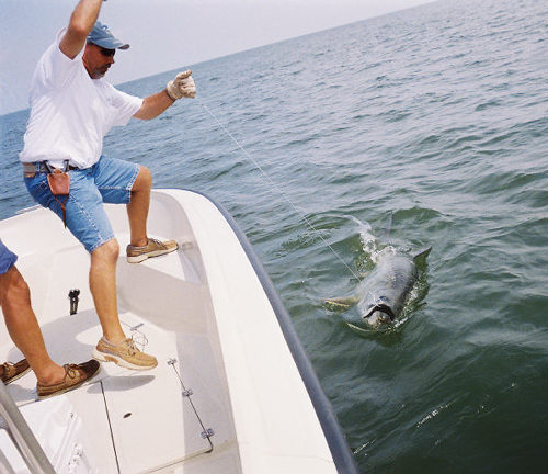 Baytown bay fishing houston fishing reports tx tournament for Houston fishing charters
