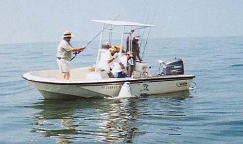 Baytown trophies fishing tx fishing trip galveston anglers for Fishing charters galveston tx